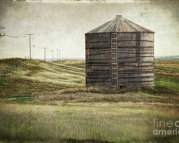 Abandoned Poster featuring the photograph Abandoned Wood Grain Storage Bin In Saskatchewan by Sandra Cunningham