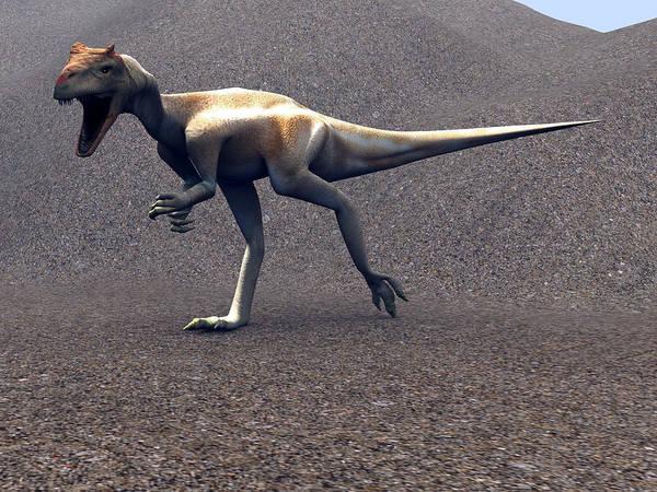 Allosaurus Poster featuring the photograph Allosaurus Dinosaur by Christian Darkin