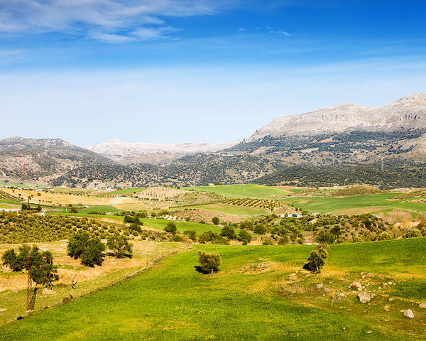 Andalucia Poster featuring the photograph Andalusia Landscape In Spain by Artur Bogacki