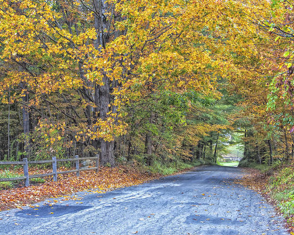 Autumn Road Vermont Poster featuring the photograph Autumn Road by Tom Singleton
