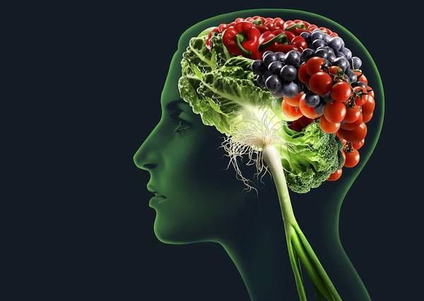 Medicine Poster featuring the photograph Brain Food, Conceptual Image by Smetek