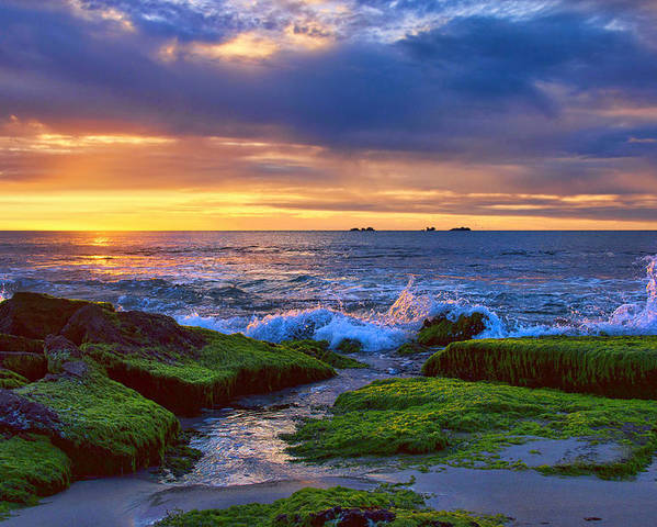 Australia Poster featuring the photograph Burns Beach by Imagevixen Photography