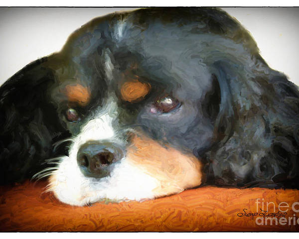 Animal Poster featuring the digital art Cavalier King Charles Spaniel by Susan Lipschutz