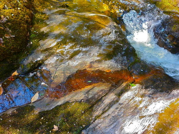 Landscape Poster featuring the photograph Childs Brook Patterns 3 by George Ramos