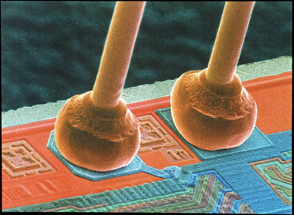 Silicon Chip Poster featuring the photograph Coloured Sem Of Integrated Circuit Micro-wires. by Power And Syred