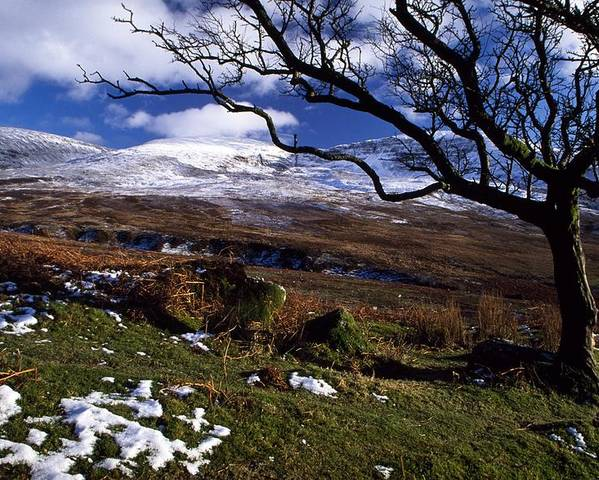 Bare Poster featuring the photograph Comeragh Mountains, County Waterford by Richard Cummins