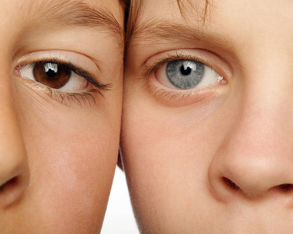 Eye Poster featuring the photograph Eye Colour by Mauro Fermariello