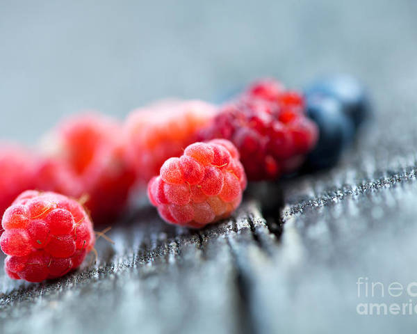 Berries Poster featuring the photograph Fresh Berries by Kati Finell