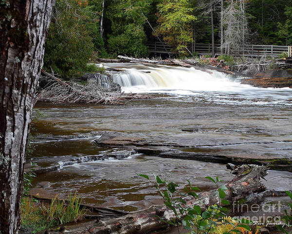 Michigan Upper Peninsula Poster featuring the photograph Lower Tahquamenon Falls Area by Steve Javorsky