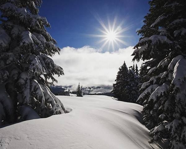 Sunlight Poster featuring the photograph Oregon Cascades, Oregon, United States by Craig Tuttle