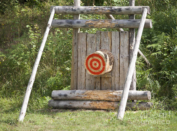 Bulls-eye Poster featuring the photograph Outdoor Wooden Bulls-eye by Jaak Nilson