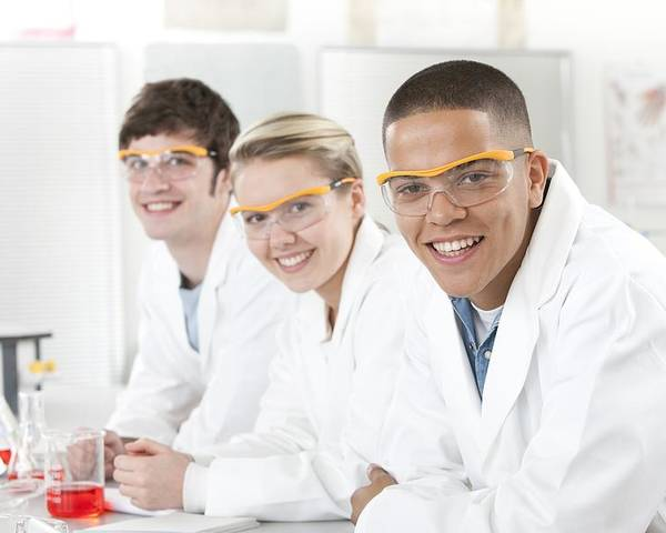 Interior Poster featuring the photograph Pupils In A Science Lesson by