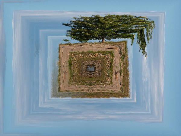 Gulf Of Bothnia Poster featuring the photograph Rowan Of The Island by Jouko Lehto