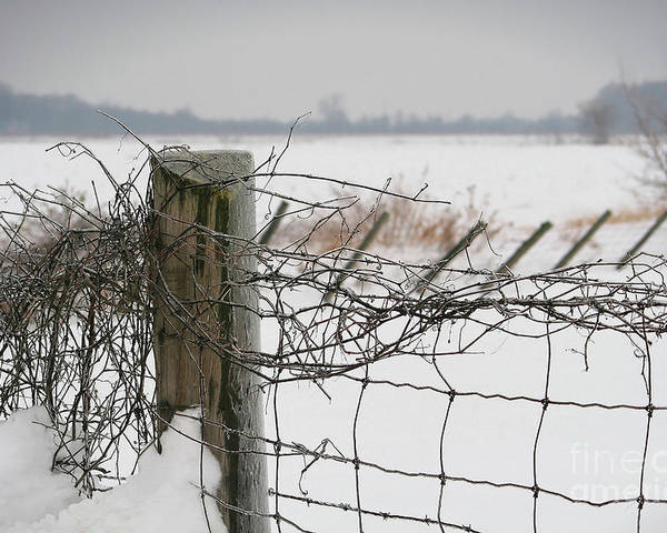 Cloud Poster featuring the photograph Snow Fence by Sandra Cunningham