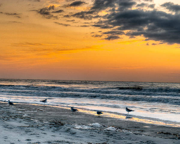 Hilton Head Island Poster featuring the photograph The Wintery Feeling Beach At Sunrise by Dennis Dame