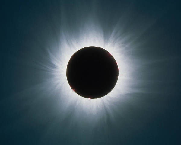 Solar Eclipse Poster featuring the photograph Total Solar Eclipse With Corona by Dr Fred Espenak