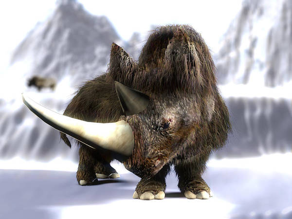 Coelodonta Antiquitatis Poster featuring the photograph Woolly Rhinoceros by Christian Darkin