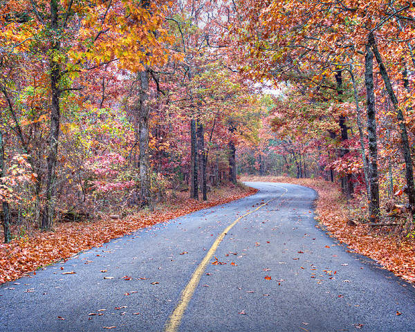 Arkansas Poster featuring the photograph 1010-4486 Petit Jean Autumn Highway by Randy Forrester