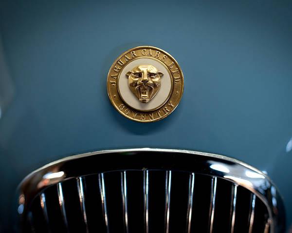 1952 Jaguar Xk120 Mark Vii Roadster Poster featuring the photograph 1952 Jaguar Hood Ornament by Sebastian Musial