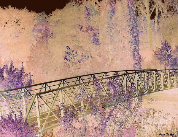 Bridge Poster featuring the painting Briidge by Alex Blaha