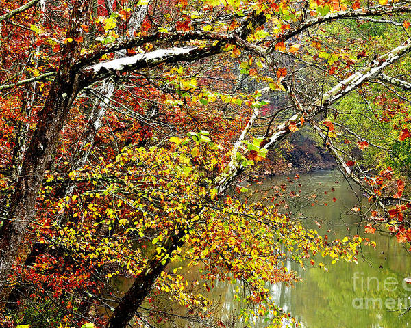 West Virginia Poster featuring the photograph Fall Along West Fork River by Thomas R Fletcher
