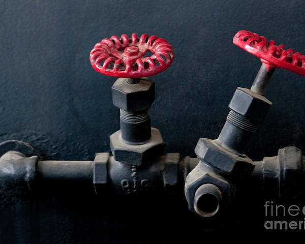 Industrial Poster featuring the photograph 2 Red Valves by Dan Holm