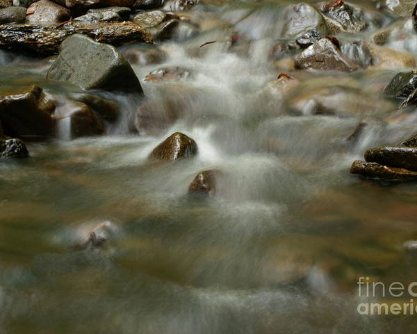 Nature Poster featuring the photograph River by Odon Czintos