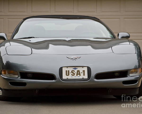 2003 Corvette Poster featuring the photograph 2003 C5 by Dennis Hedberg
