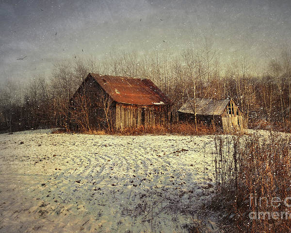 Abandon Poster featuring the photograph Abandoned Barn With Snow Falling by Sandra Cunningham