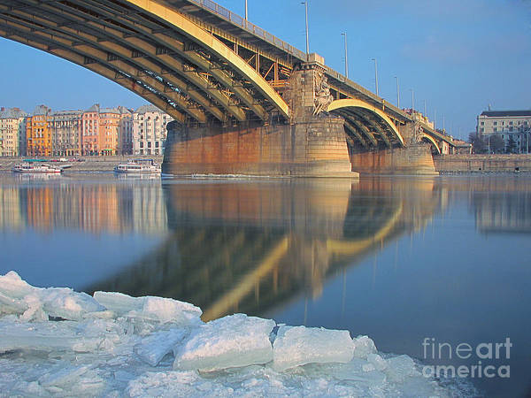 Nature Poster featuring the photograph The Bridge by Odon Czintos