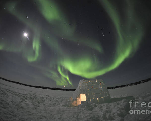 Yellowknife Poster featuring the photograph Aurora Borealis Over An Igloo On Walsh by Jiri Hermann