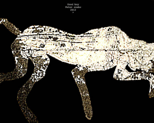 Dog Poster featuring the digital art Good Boy - 2012 by Peter Szabo