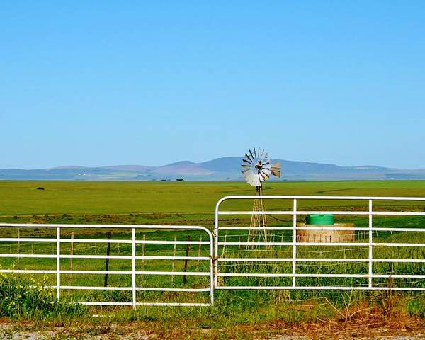 Water Pump; Windmill; Summer; Warm; Wind; Sky; Grass; South Africa; Landscape; Nature; Rural; Background; Decorative; Green; Meadow; Tank; Concrete; Swartland; Blue; Metal; Wheel; Poster featuring the photograph Windmill Water Pump by Werner Lehmann