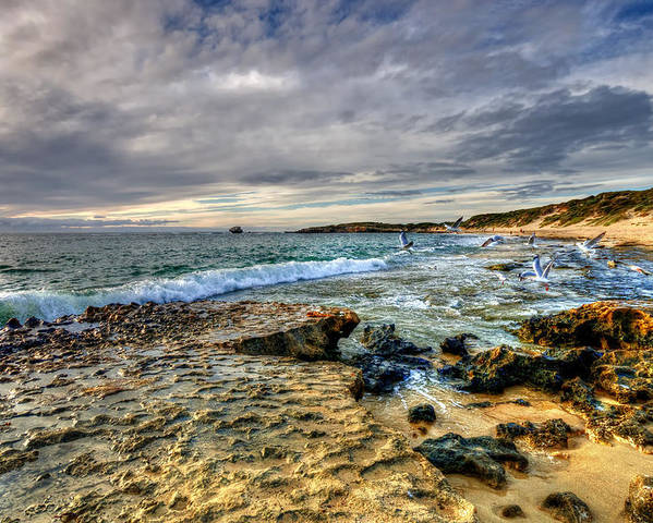 Beach Poster featuring the photograph Point Peron Wa by Imagevixen Photography