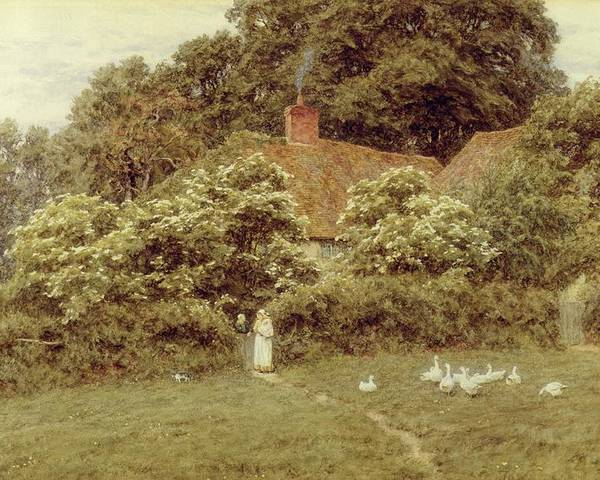 Mother And Child; Gate;rural Scene; Country; Countryside; Home; House; Path; Picturesque ;idyllic; Female; Friends; Geese; Female Poster featuring the painting A Cottage At Farringford Isle Of Wight by Helen Allingham