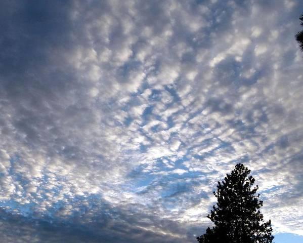 Mackerel Sky Poster featuring the photograph A Mackerel Sky by Will Borden