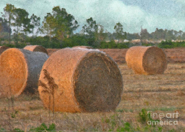 Gold Poster featuring the digital art A Roll In The Hay by Peggy Starks
