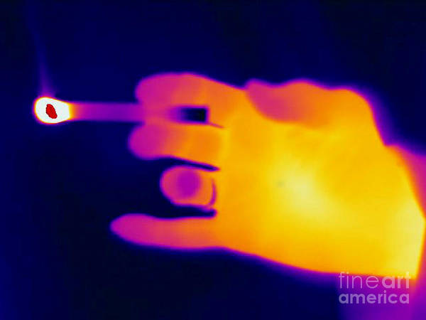 Thermogram Poster featuring the A Thermogram Of A Lit Cigarette by Ted Kinsman