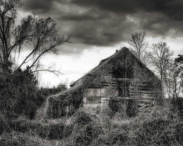 Barn Poster featuring the photograph Abandoned Barn by Brenda Bryant