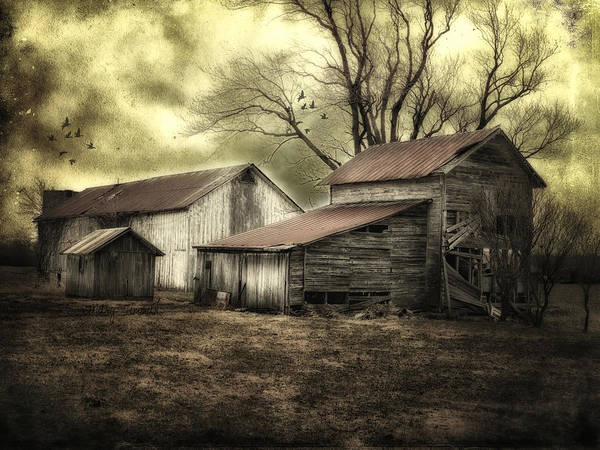 Barns Poster featuring the photograph After The Storm by Mary Timman