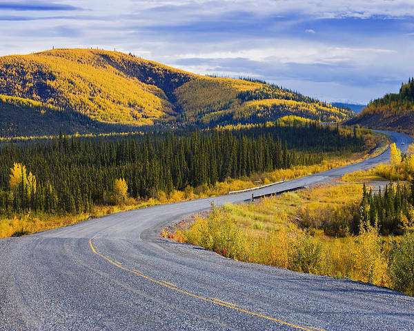 Autumn Poster featuring the photograph Alaska Highway Near Beaver Creek by Yves Marcoux
