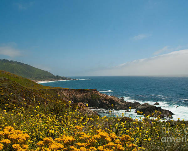 Beach Poster featuring the digital art Along Big Sur by Carol Ailles
