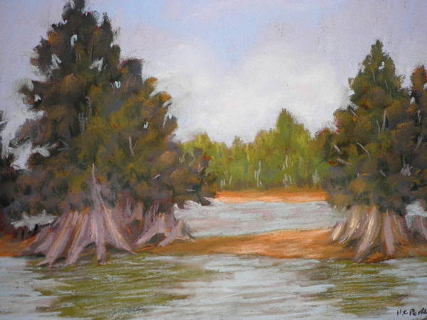 Hillsboro River Poster featuring the pastel Along The Hillsboro by Curt Peifley