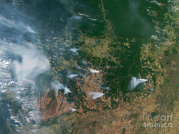 2003 Poster featuring the photograph Amazon Basin Forest Fires, Satellite by NASA / Science Source