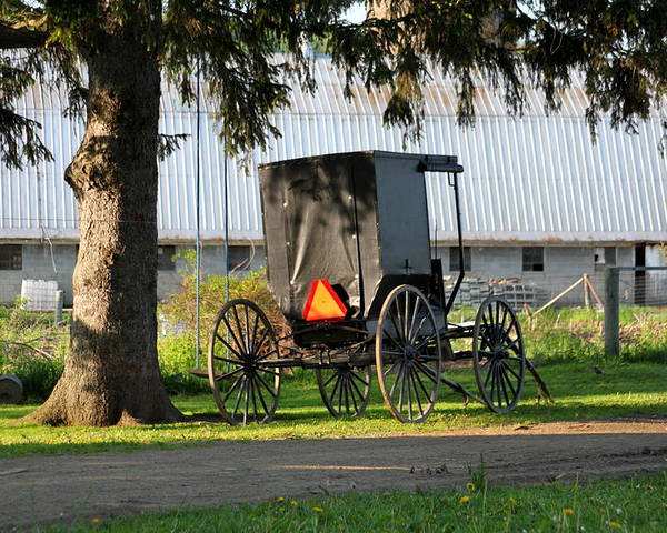 Amish Poster featuring the photograph Amish Buggy by Beverly Kobee