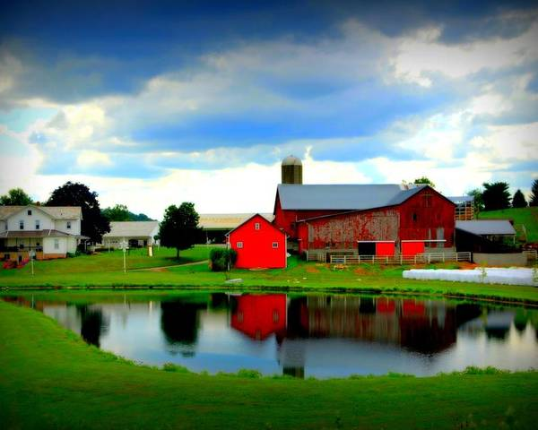 Farm. Amish Poster featuring the photograph Amish Farm by Mendell Patton