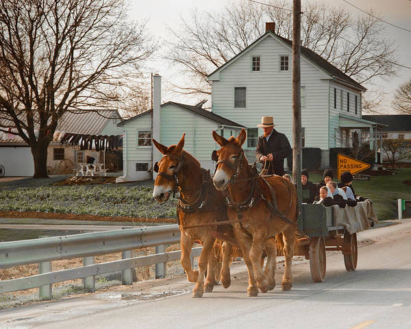 Amish Poster featuring the photograph Amish Wagon by Heidi Reyher
