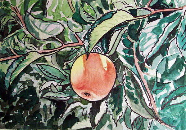 Sketch Poster featuring the painting Apple Tree Sketchbook Project Down My Street by Irina Sztukowski
