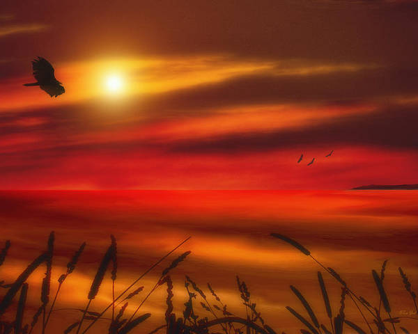 Sunset Poster featuring the photograph August Sunset by Tom York Images