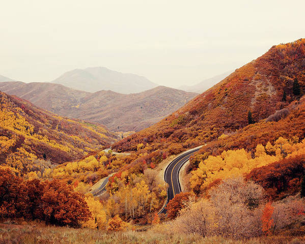 Horizontal Poster featuring the photograph Autumn Colored Trees Along Mountain Road by Www.julia-wade.com